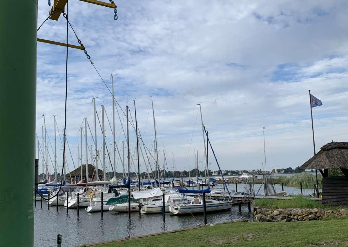 Haddeby - Hafen bei Busdorf