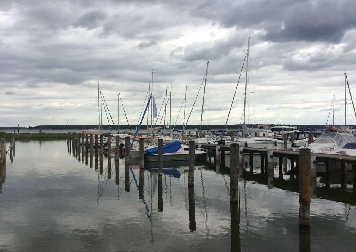 Hafen Klink - Marina near Klink