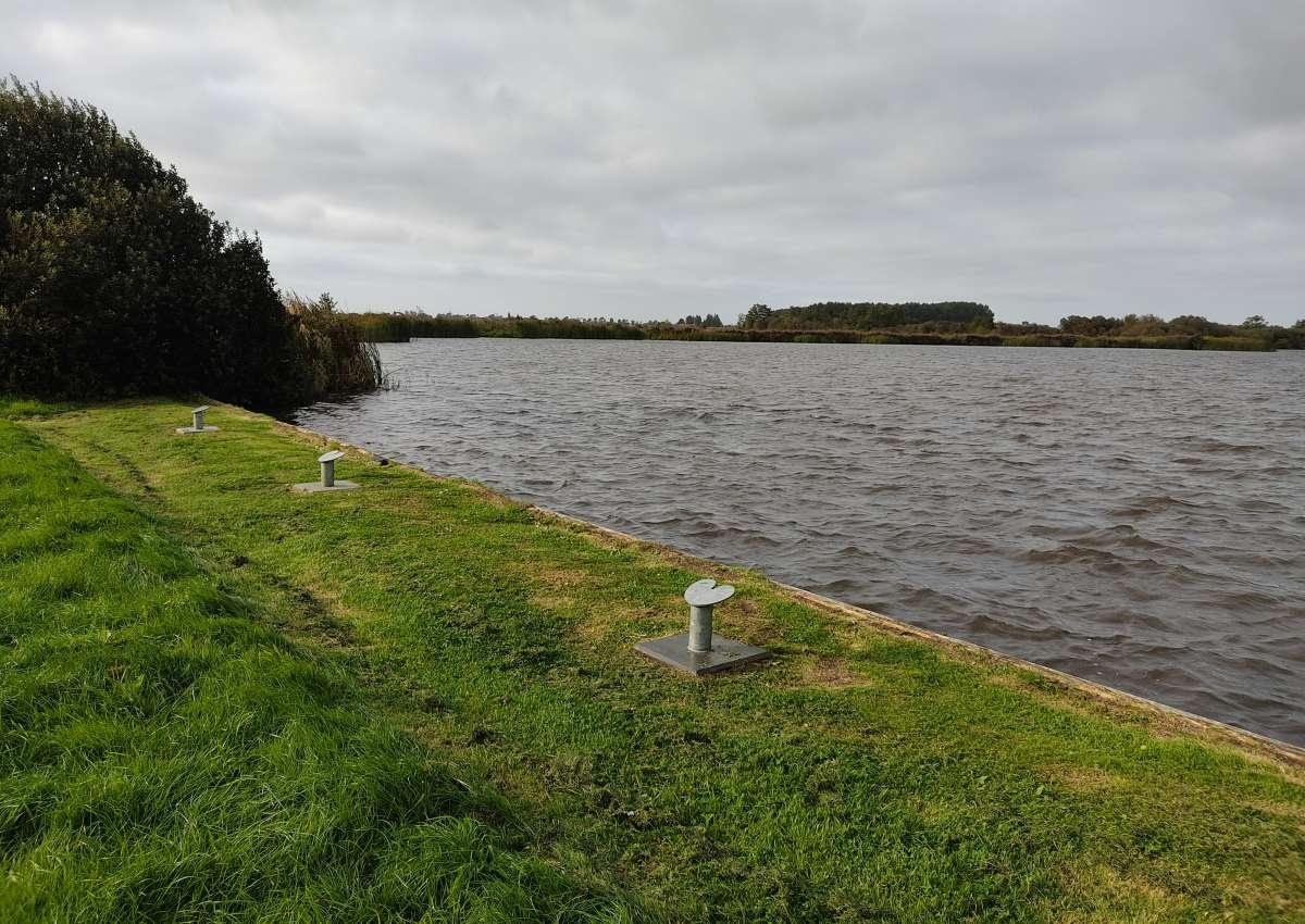 Marrekrite PR 04 P2 - Anchor near Leeuwarden (Warten)